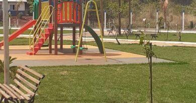 Praças recebem plantio de árvores e revitalização